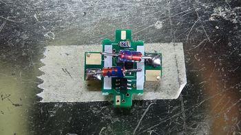 DSC00203-1.jpg